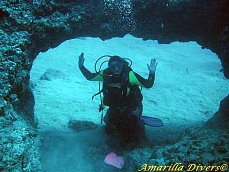 Diving in Tenerife with amarilladivers
